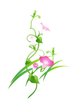 Icon flower Illustration