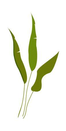 blade: Leaf icon.
