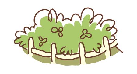 icon bush