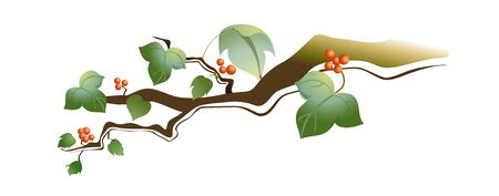 a bough: Elegant bough vector icon illustration. Illustration