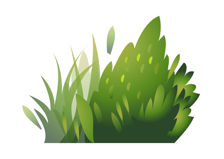 vector illustration: plants Illustration