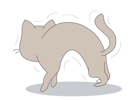 Animal character vector illustration-cat