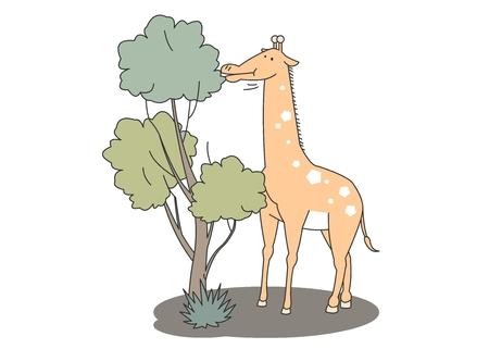 Animal character vector illustration-giraffe
