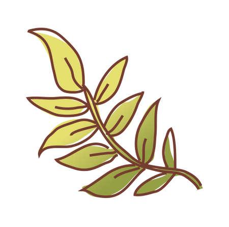 blade: vector illustration: plant Illustration