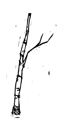 a bough: Vector Illustration: tree Illustration