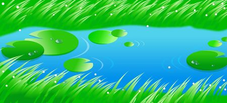 lily pad: High angle view of lily pads in a lake