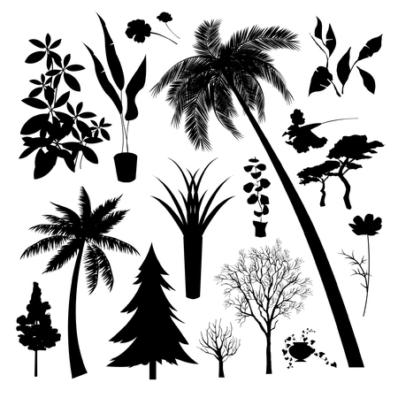Set of silhouette of Different type  of trees and plant Illustration
