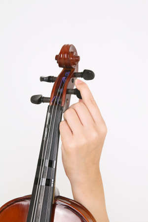 instrumentalist: Isolated shot of a violinists hand holding a violin