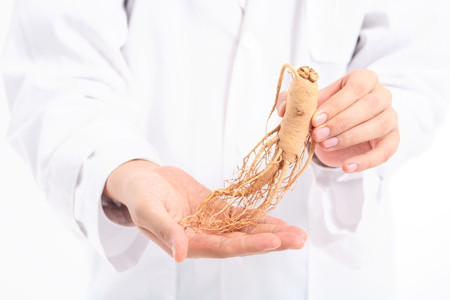 Doctor holding a ginseng