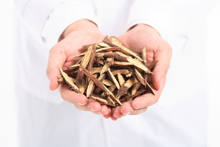 Hands holding ingredients of korean medicine Stock Photo