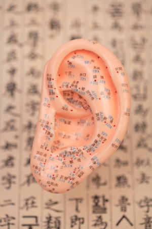 ear acupuncture: Close up shot of an ear model Stock Photo