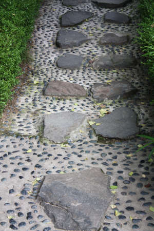 stepping: Path of stepping stone
