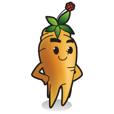 Fresh vegetables,fruits character icon isolated in white - Ginseng Illustration