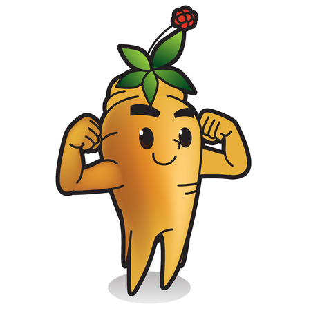 Fresh vegetables,fruits character icon isolated in white - Ginseng Ilustracja