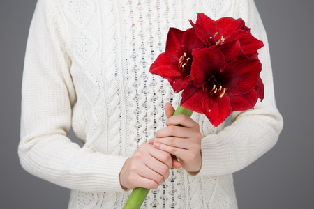 Isolated shot of hands holding flowers shoot in studio - Red lilies