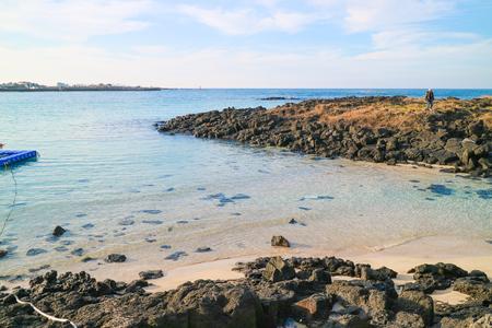 Scenery of the ocean of jeju island