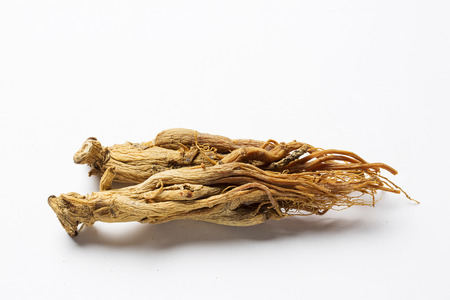 dried red ginseng, - isolated on white Zdjęcie Seryjne