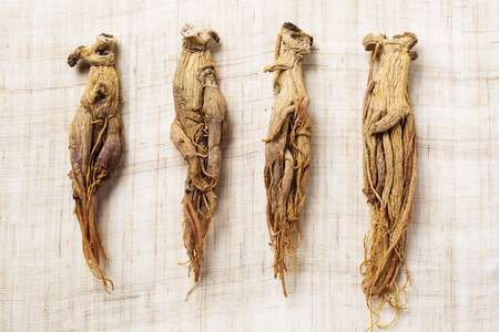 dried red ginseng,on linen fabric