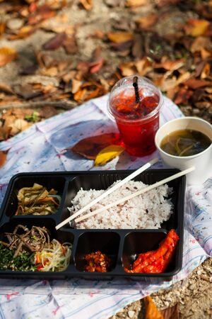 Korean dishes - a complete meal box for picnic
