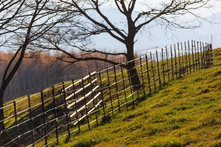fenced in: Fenced ranch in fall