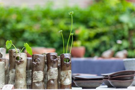 Korean folk village - Pottery plant pots with grasses