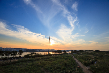 Scenery of reed park connecting to Han River at sunset