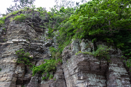 Marvelous rock cliff at fossil site Stock Photo - 84851671
