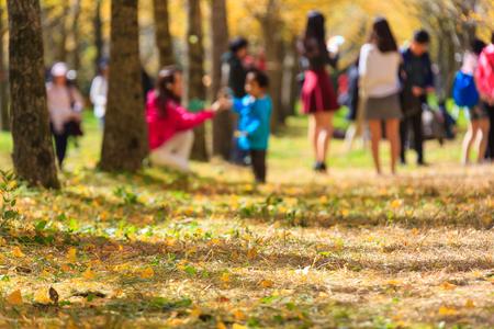 Persone in picnic sul giallo ginkgo foresta