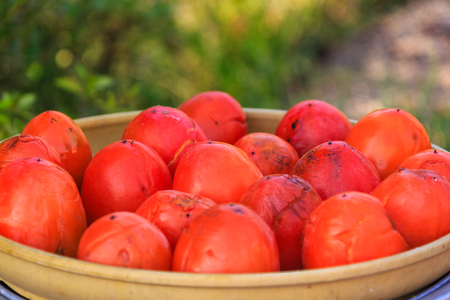 A basket of ripe persimmons