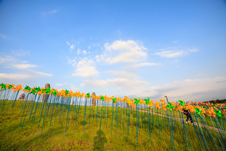 Field with pinwheels on poles Stock Photo