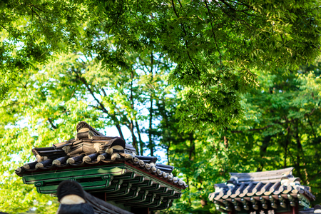 Tiled roof gates and lush trees