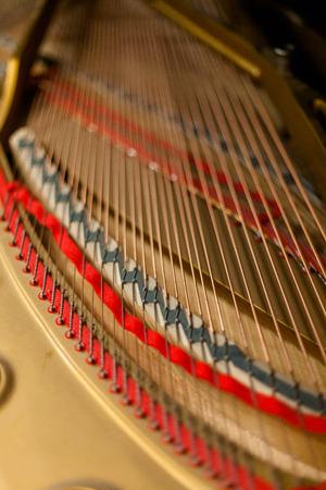 피아노 내부의 현악기 스톡 콘텐츠