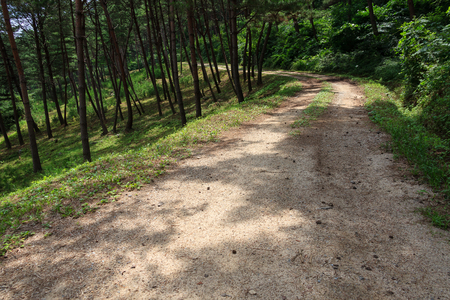 Walking trail, Oissi Beosun gil, Gyeongsangbuk-do, South Korea