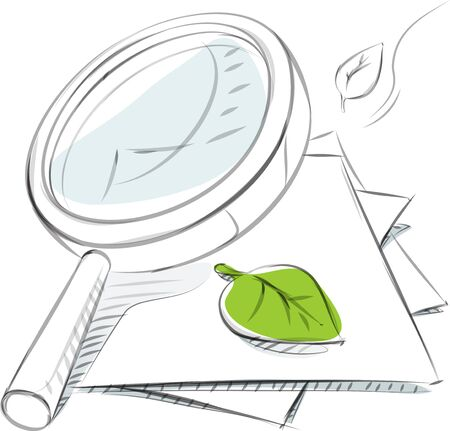 Business sketches of magnifier and leaf Çizim