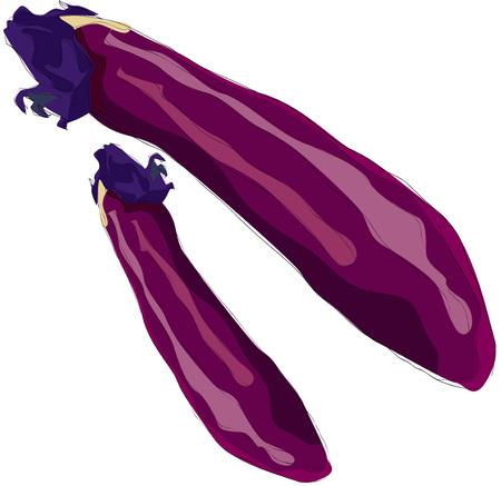 Painting of eggplant