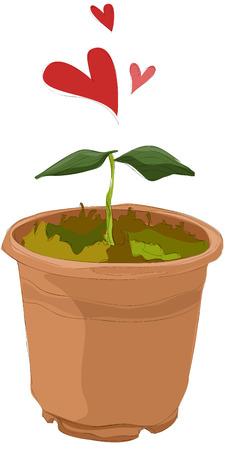スプラウト プランターの絵画  イラスト・ベクター素材
