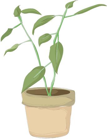 プランターの絵画  イラスト・ベクター素材