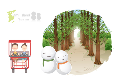 Tour attraction - Nami Island chuncheon