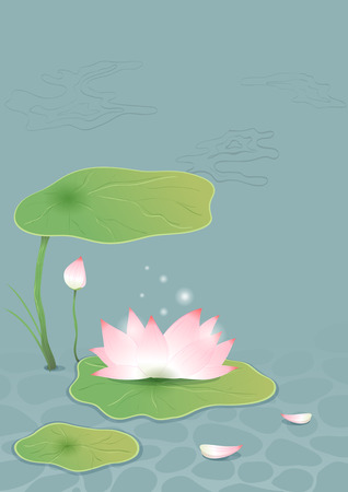 Lotus on pond