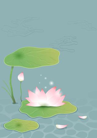 Lotus on pond