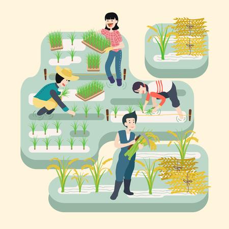 Personnes travaillant dans la rizière, illustration vectorielle. Banque d'images - 90827109