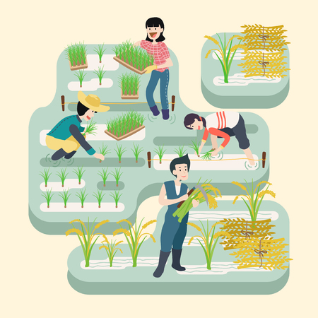 People working at rice farm, vector illustration.