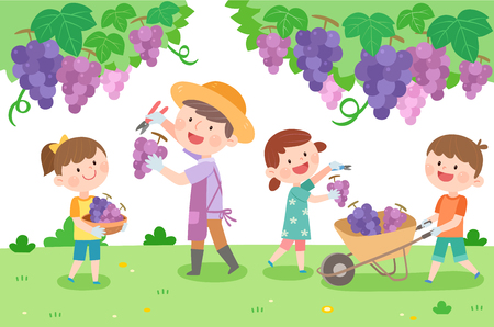 Happy family picking grape, vector illustration.