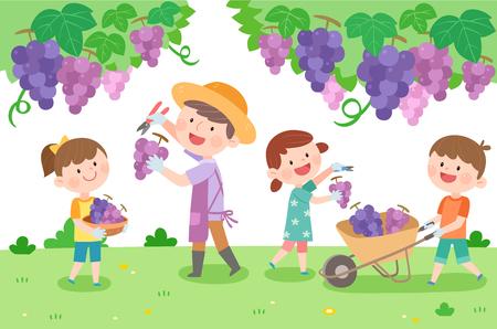Happy family picking grape, vector illustration.