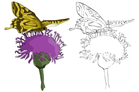 Vintage style hand drawn swallowtail butterfly on a flower