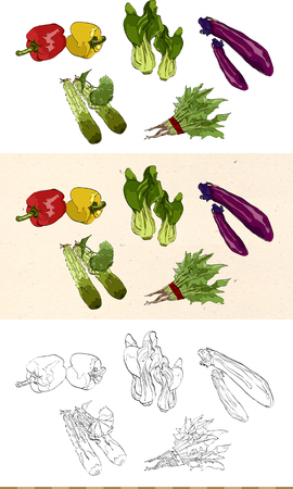 Set of vintage vegetable monochromatic and colored icon