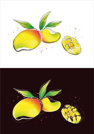 Two version background of fruit sketch