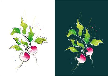 Two version background of vegetable sketch