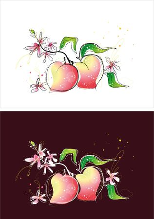 Two version background of peach sketch