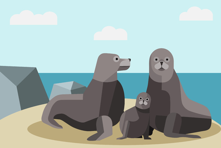 Seal family in the sea